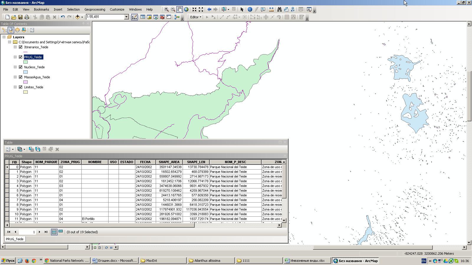 Шейп-файлы, содержащие различную пространственную информацию национального парка Тейде (Teide National Park)