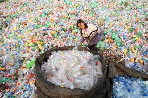Пластмассовый мусор и его воздействие на экологию