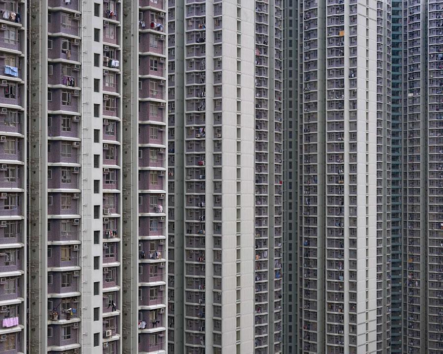 Вопреки всему: живая природа Гонконга