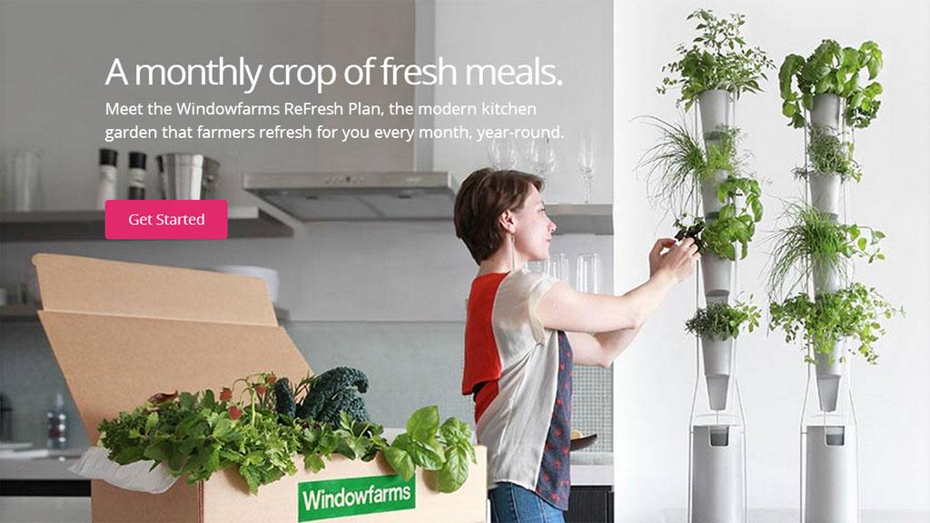 Оконная ферма обеспечит вас витаминами круглый год