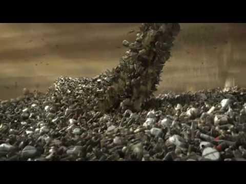 Пластмасса убивает 1,5 миллиона морских животных каждый год