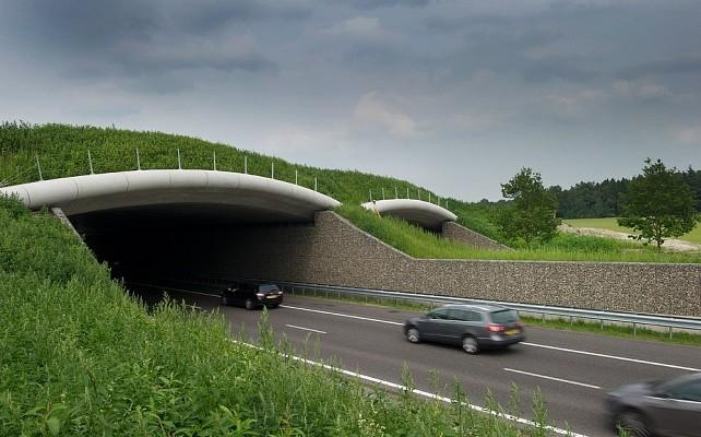 Ecoduct2
