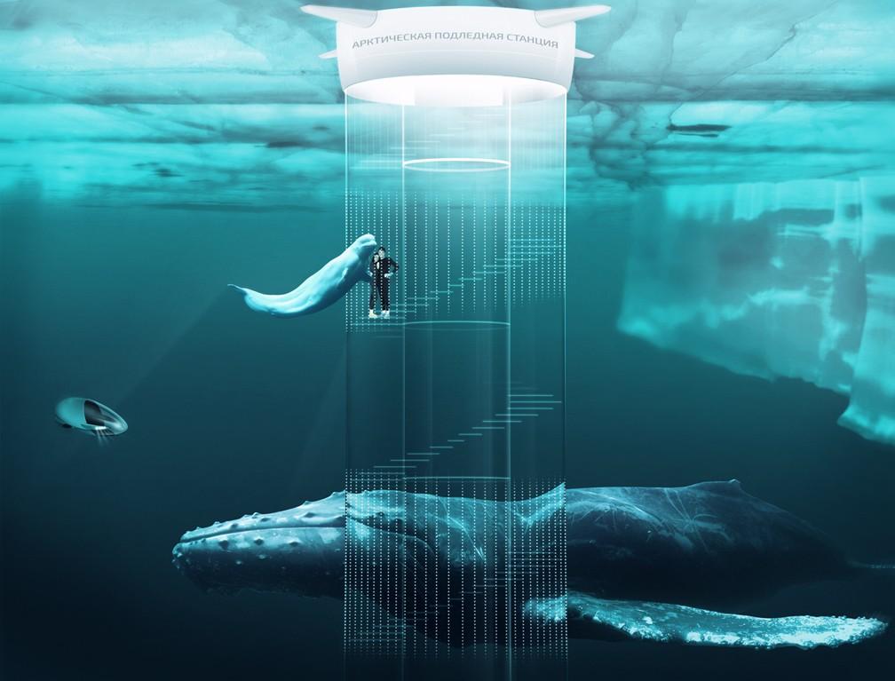 Арктика 2100