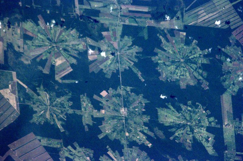 Вырубки лесов в Боливии
