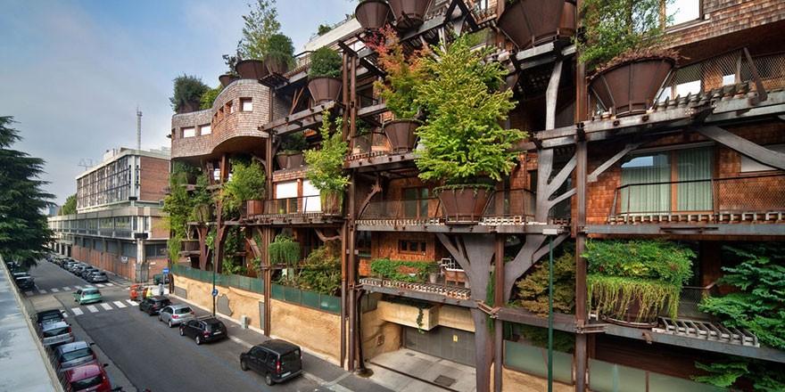 housetree4