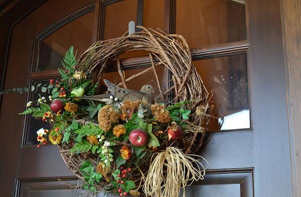 Гнездо на двери