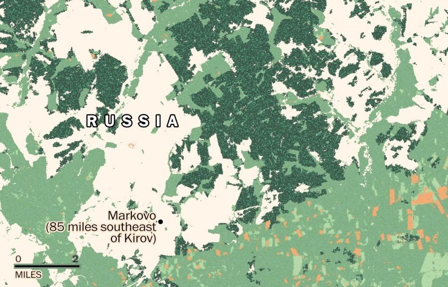 Площадь лесов во время СССР