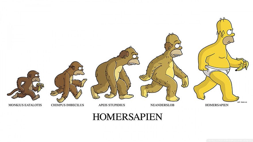 evolution13