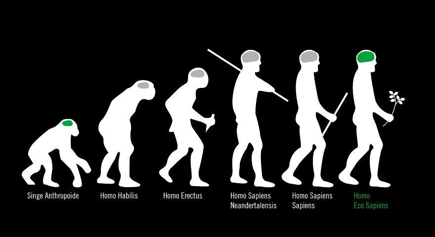 evolution17