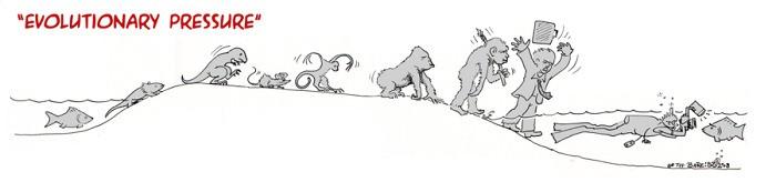 evolution38