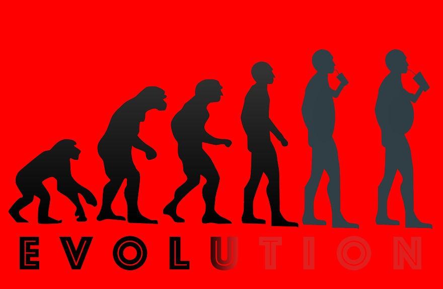 evolution39