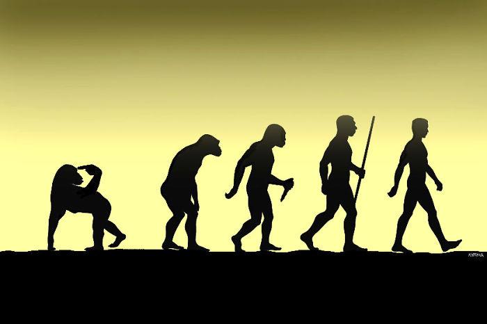 evolution44