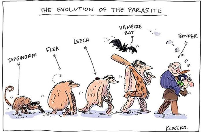 evolution5