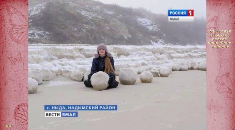 Снежные шары покрыли 18 километров побережья Обской губы