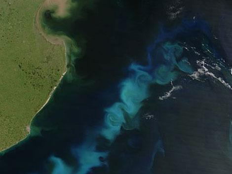 Удобрить океан